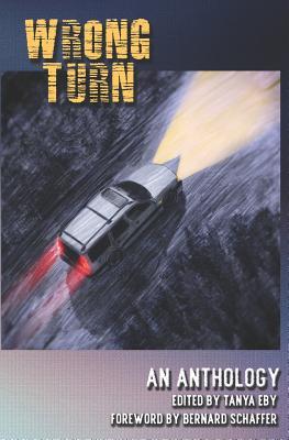 Wrong Turn - Schaffer, Bernard (Foreword by), and Eby, Tanya