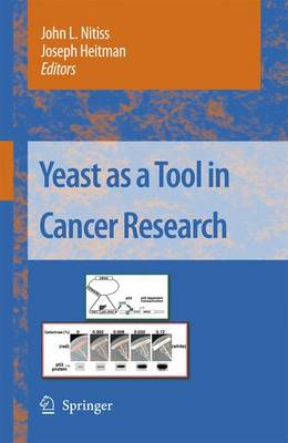 Yeast as a Tool in Cancer Research - Nitiss, John L (Editor)